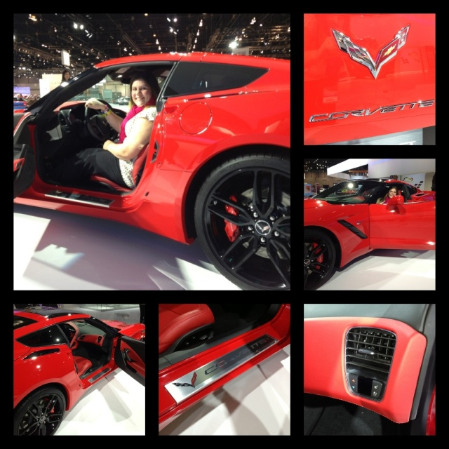 Chevy Corvette Stingray 2014 Chicago Auto Show HUNKSrHANDBAGS
